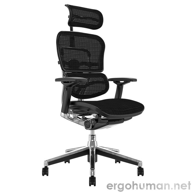 Ergohuman Office Chair with Head Rest